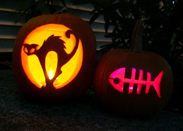 How to carve a halloween pumpkin simple ways and stunning for Pumpkin kitty designs