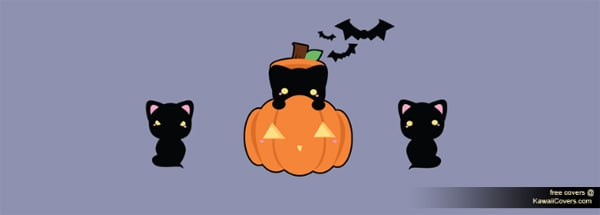 Kawaii Kitty in a Pumpkin Facebook Cover