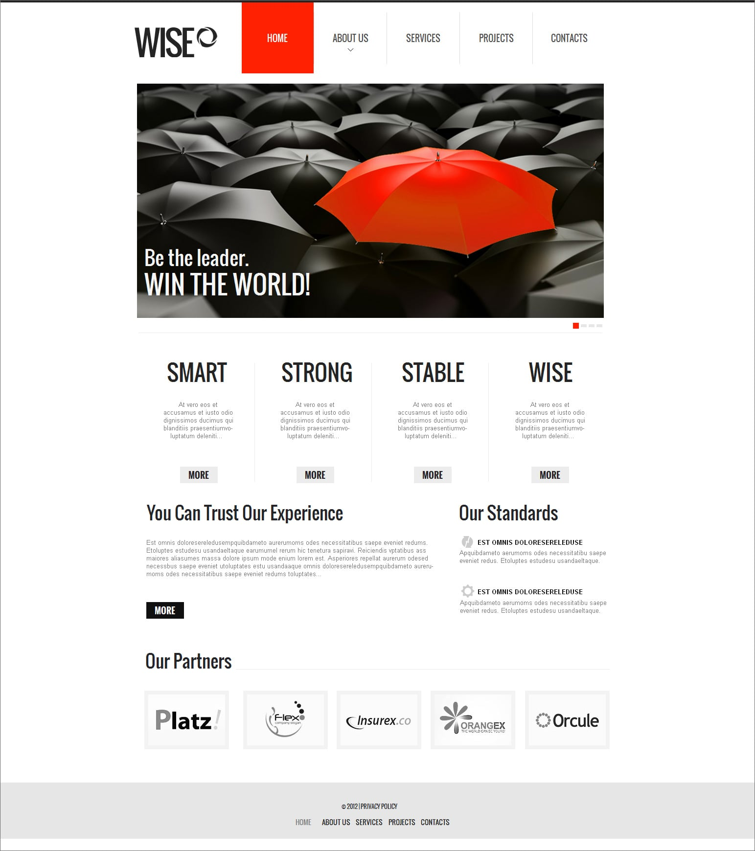 Build a clean website design examples tips and templates for Building design website
