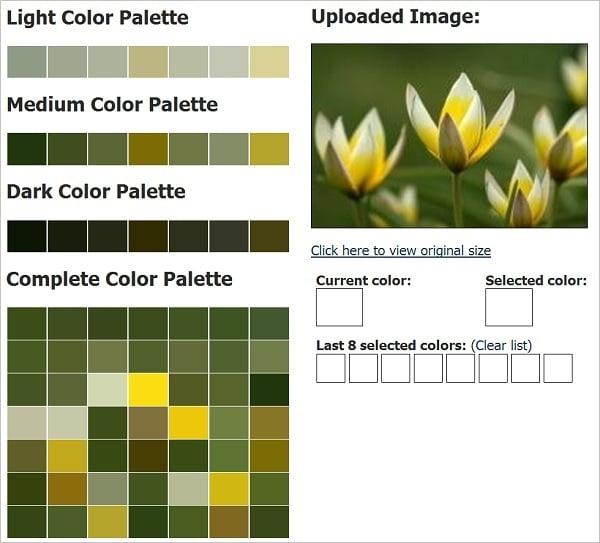 CSSDrive Color Palette Generator