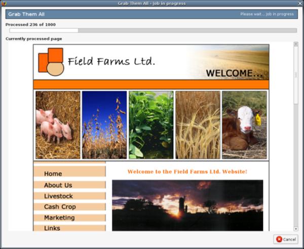 Firefox Screenshot Capture Addons - Grab Them All!