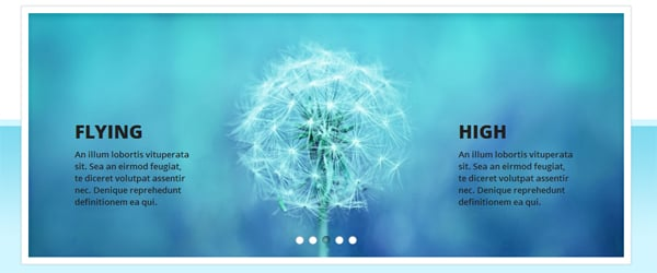 25 Free and Premium jQuery Image Slider Plugins