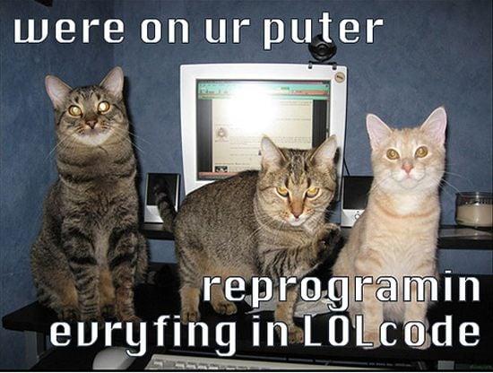 Geek Cats