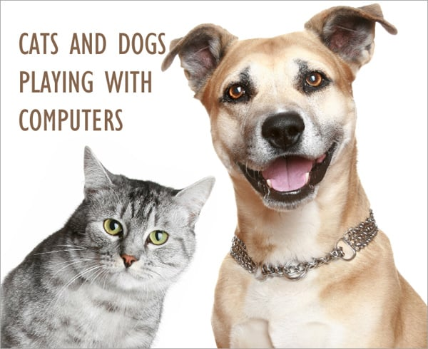 Funny demotivators and cartoons of cats and dogs playing with computers and laptops
