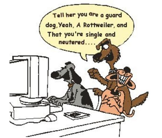 3 dogs are chatting - cartoon