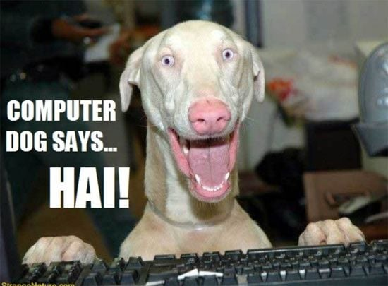 Crazy computer dog says Hi