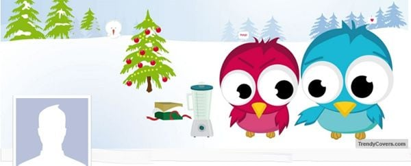 Christmas Love Birds Facebook Cover
