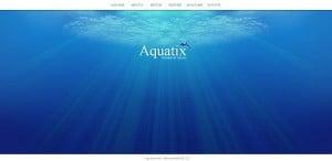 Deep-Blue Template for Aquarium Website