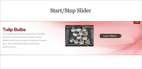 StartStop Slider