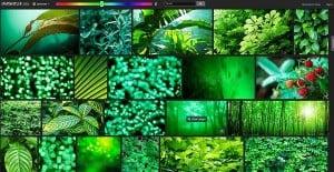 Shutterstock Labs Spectrum Color Palette