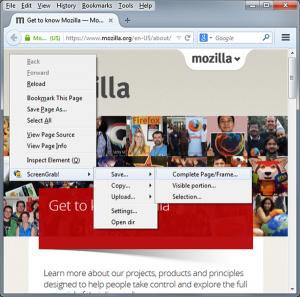 Firefox Screenshot Capture Addons - Screengrab Fix Version