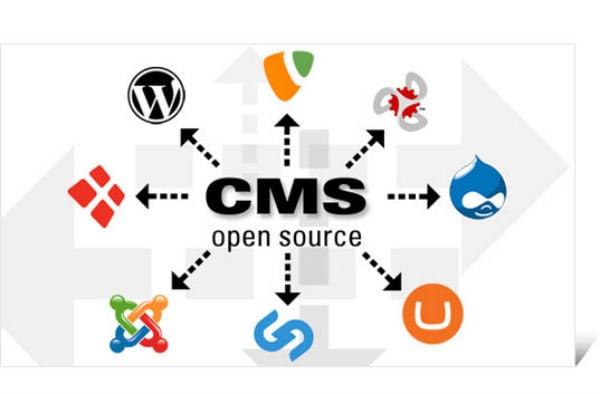 website development tool cost