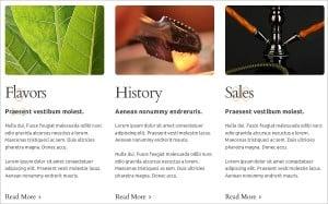Combining Fonts - Hookah Website Template