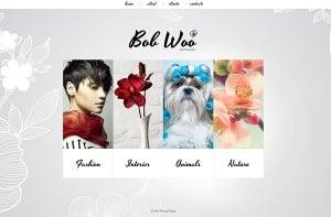 Make a Photo Portfolio Website -