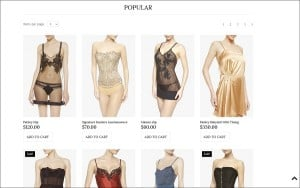 Ecommerce Templates of MotoCMS - lingerie grid