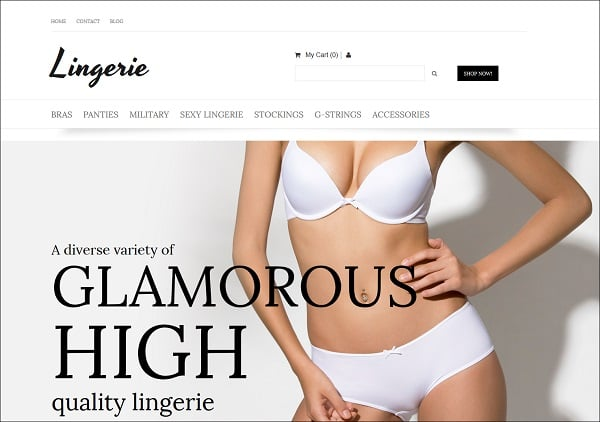 Ecommerce Templates of MotoCMS - lingerie store