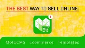 Ecommerce Templates of MotoCMS - main image