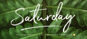 Best handwritten fonts - Saturday