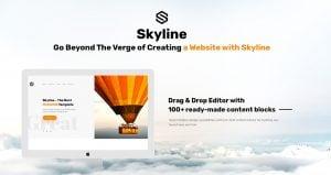 Skyline Business Website - content blocks