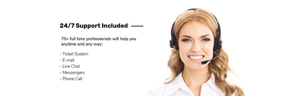 Skyline Business Website from MotoCMS - customer support