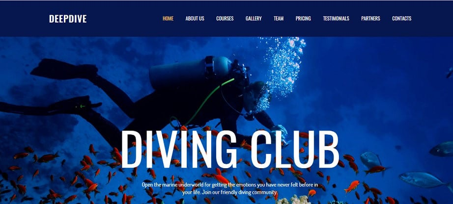 Deepdive Sports Website Design