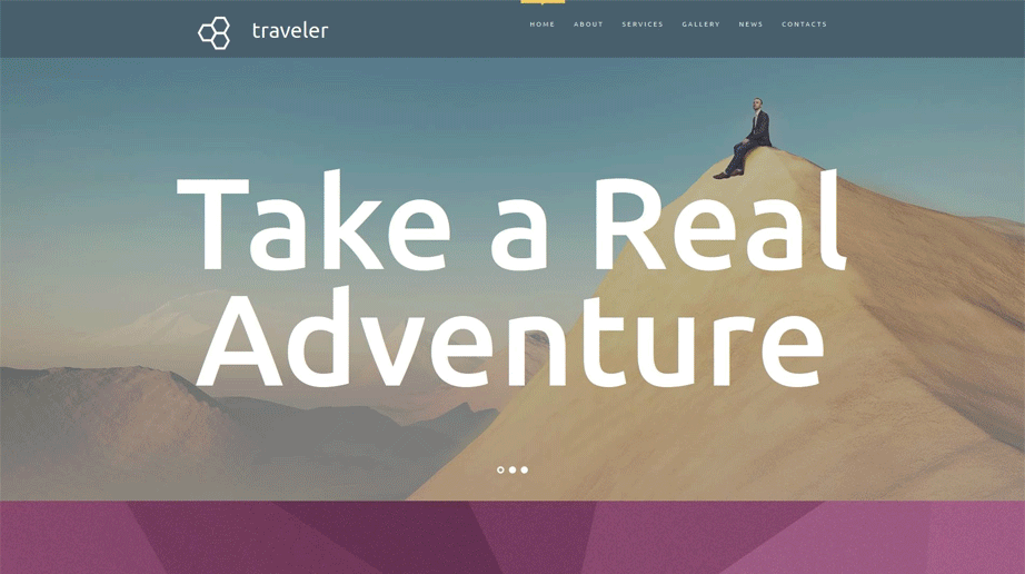Trip Agency Website Design