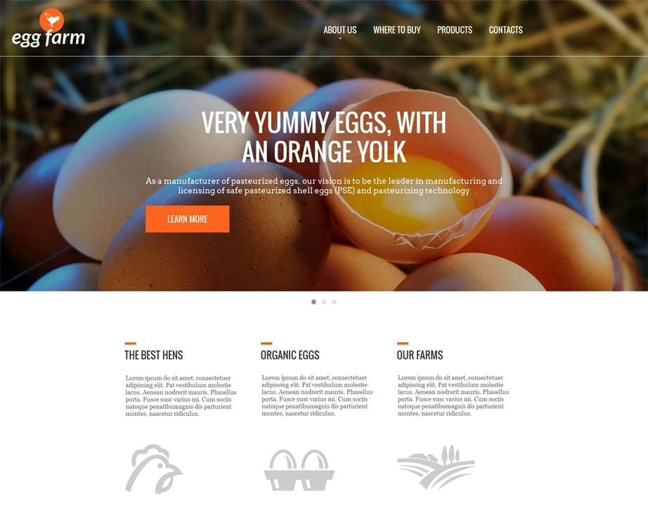 Poultry Farming Website Design