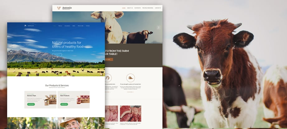 Farmers Website featured image