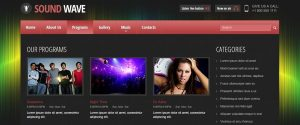 radio website design programs