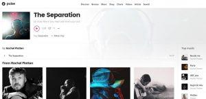 radio website design widgets