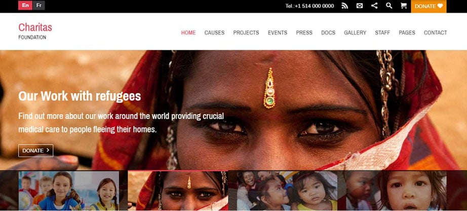 Charitas Non-Profit WordPress Theme