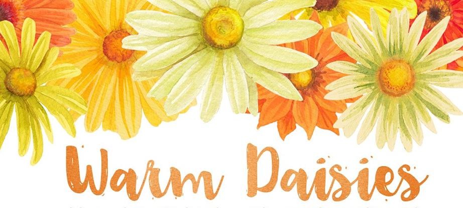 Warm Color Daisy Florals