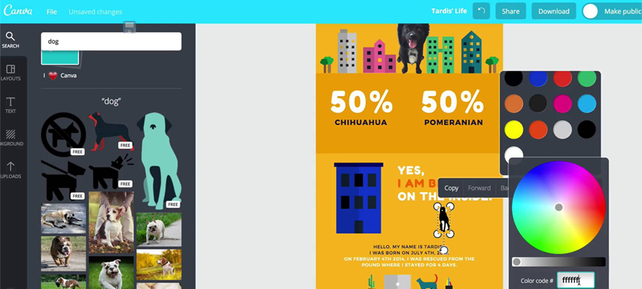 Canva editable infographic templates