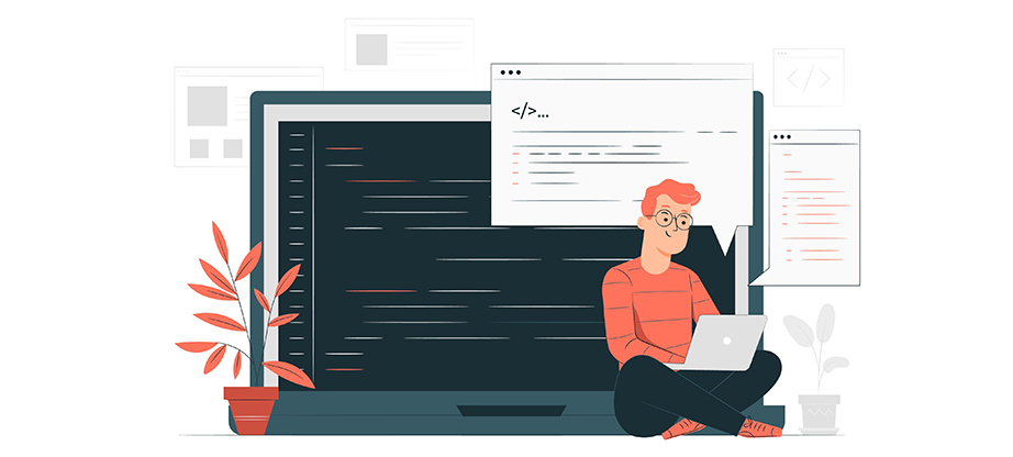 web development vs programming
